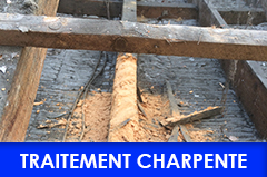 traitement charpente